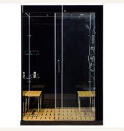 Venus M6030 Sliding Door Steam Shower