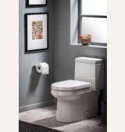 Wicker Park One-Piece CT Toilet