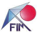 FIM Manufacturing Inc.