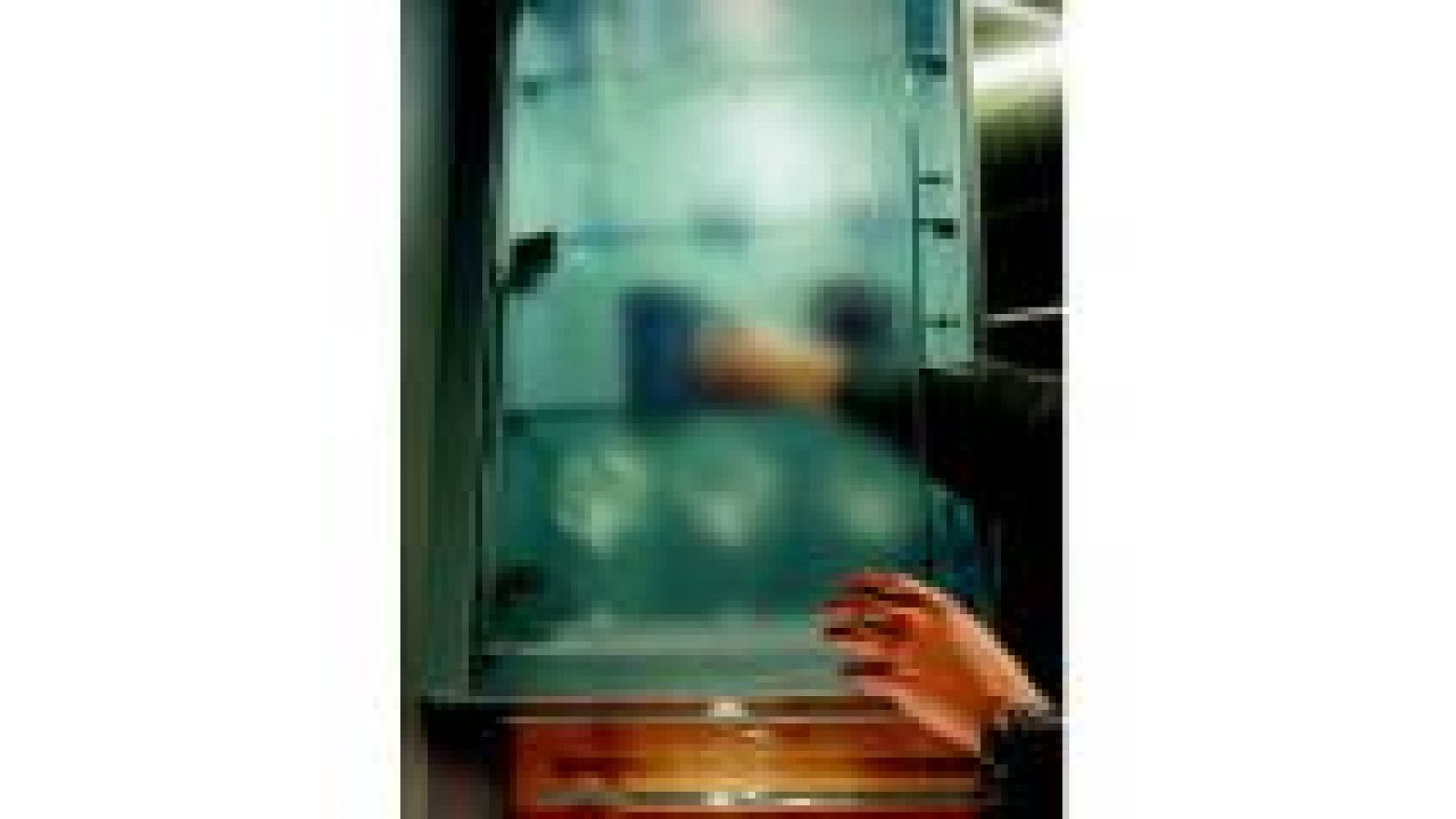 Pebble-glass-door