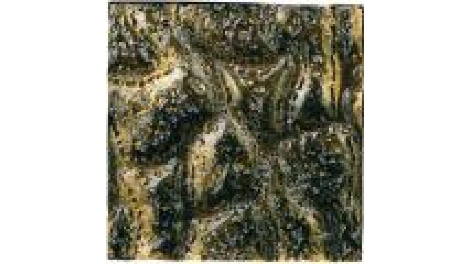 VG137 Textured Bronze