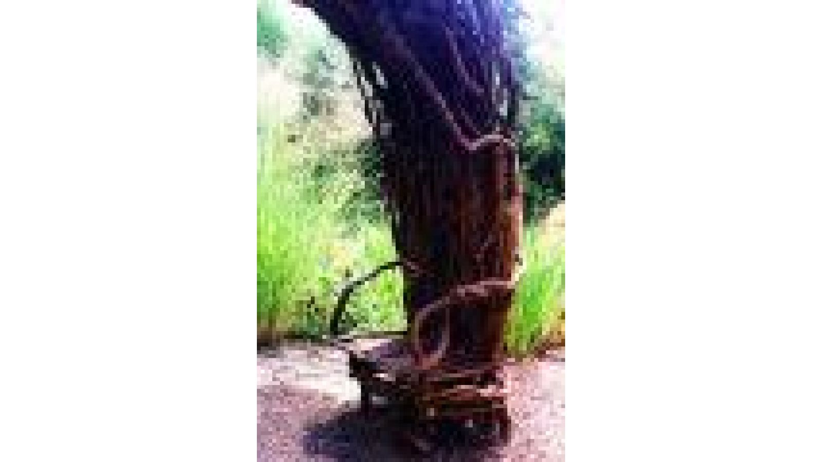 Sitting Arbor