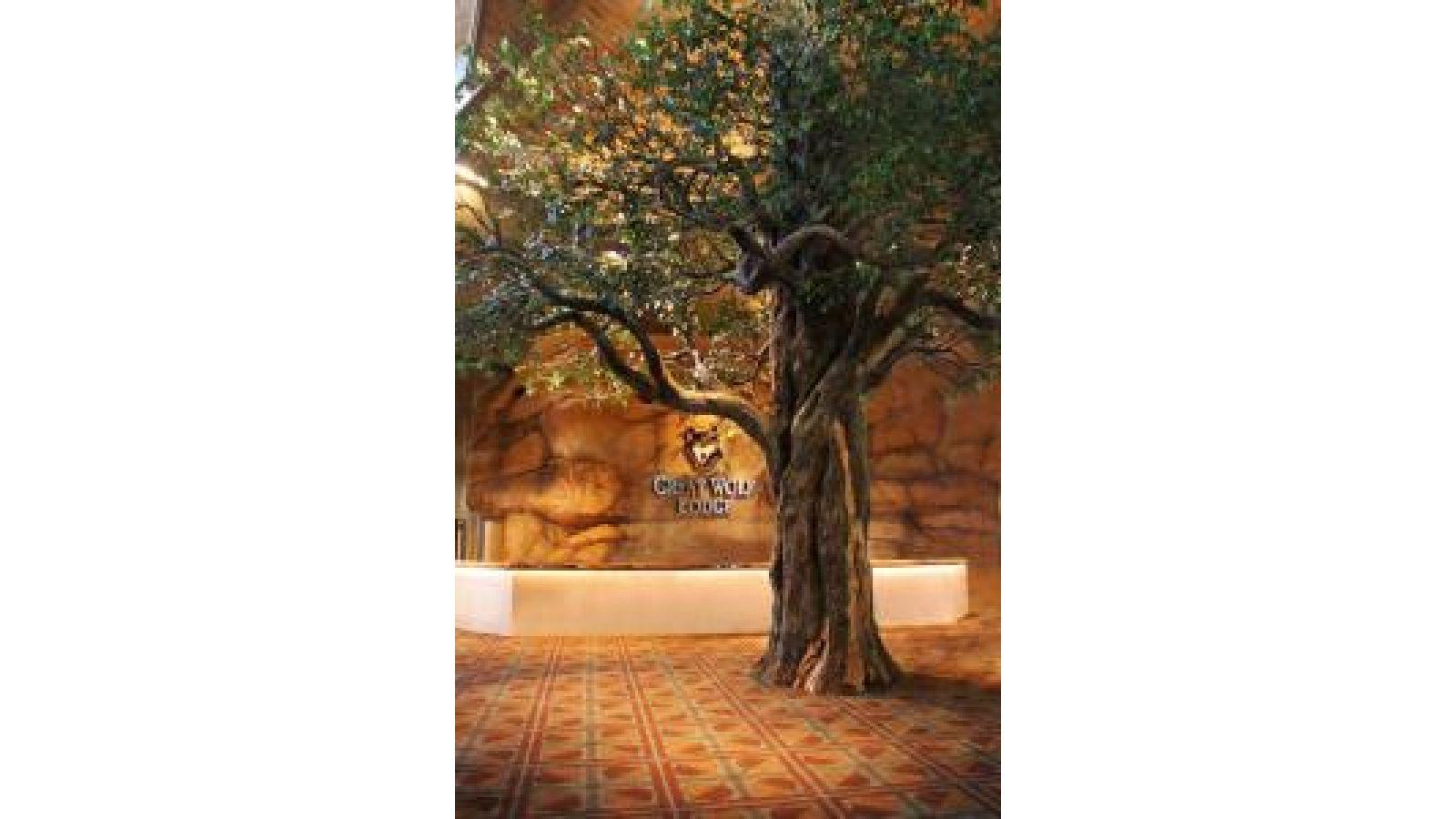 Oak Tree – Resort