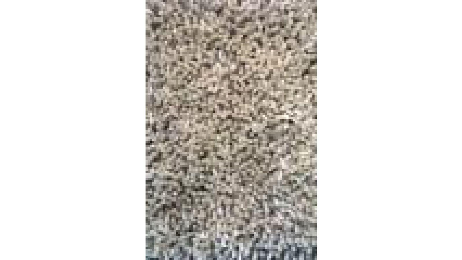 Wool Shag Area Rugs - Farro
