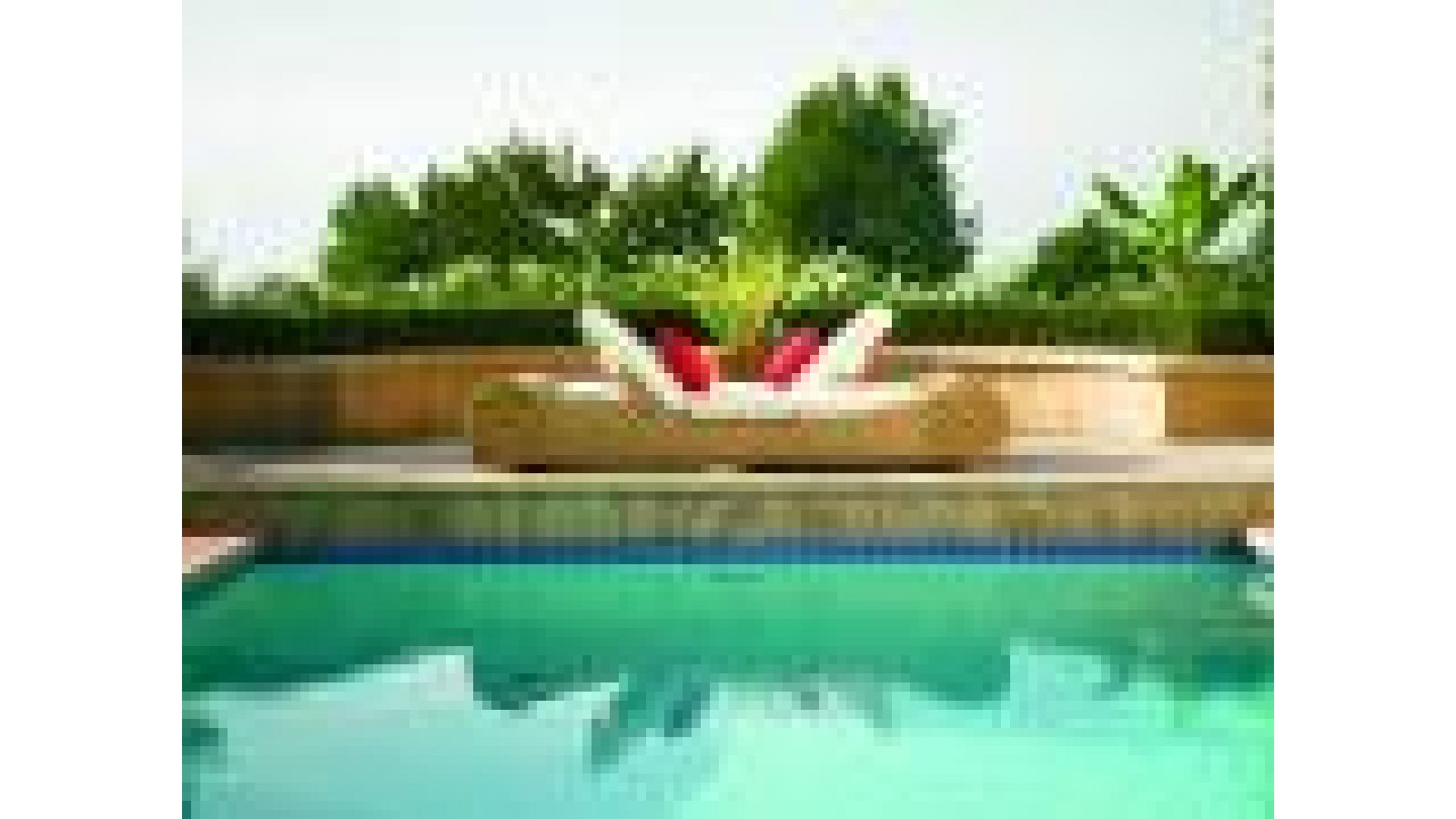 Cortez Adjustable Pool Bed