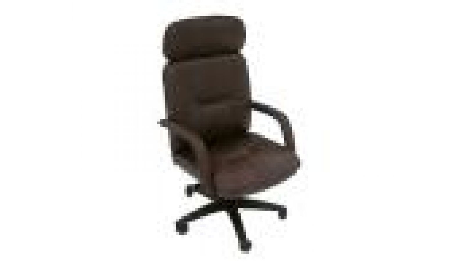 1580D Executive Leather Plus Chair