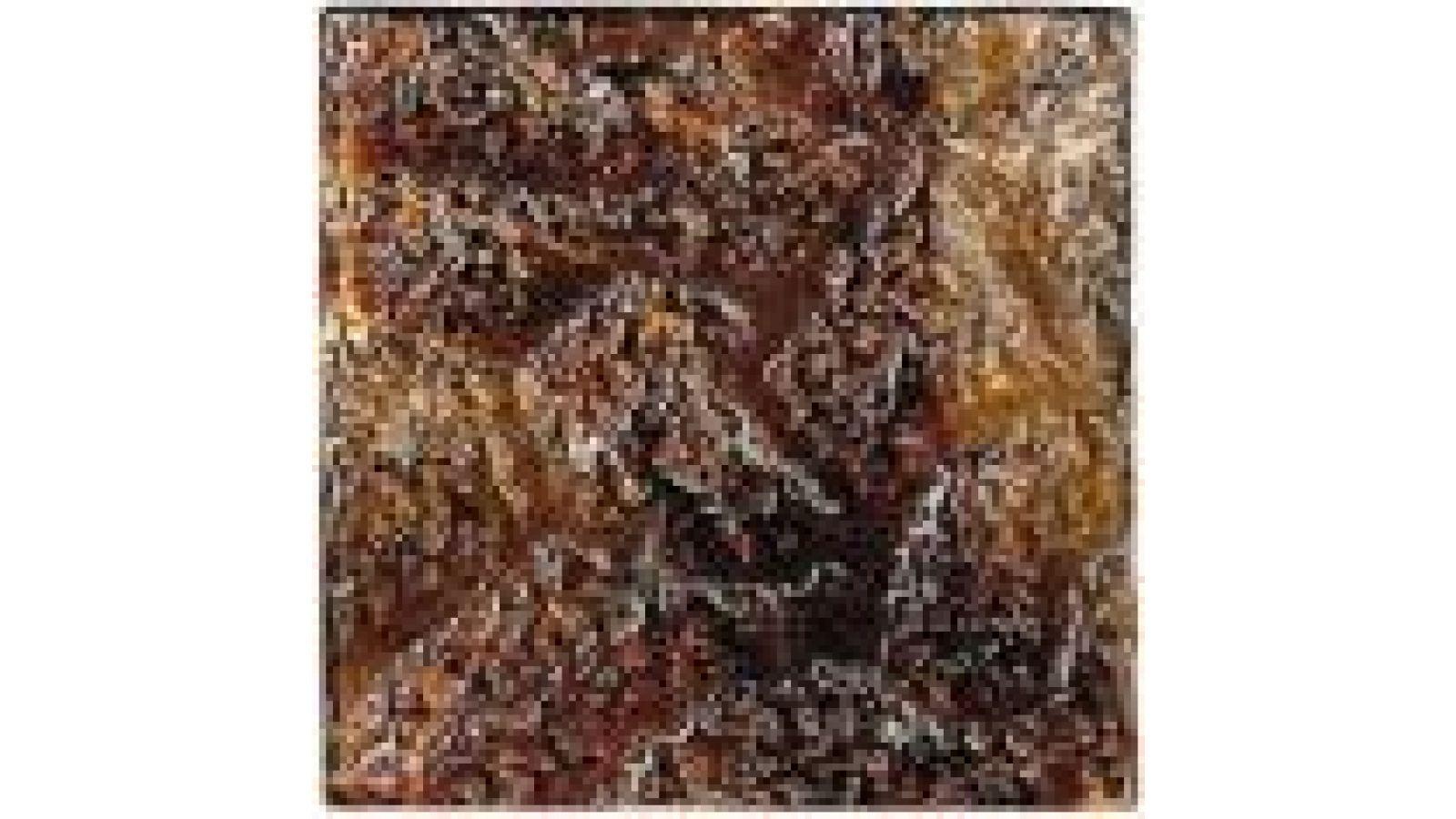 VG116 Textured Cinnamon Swirl