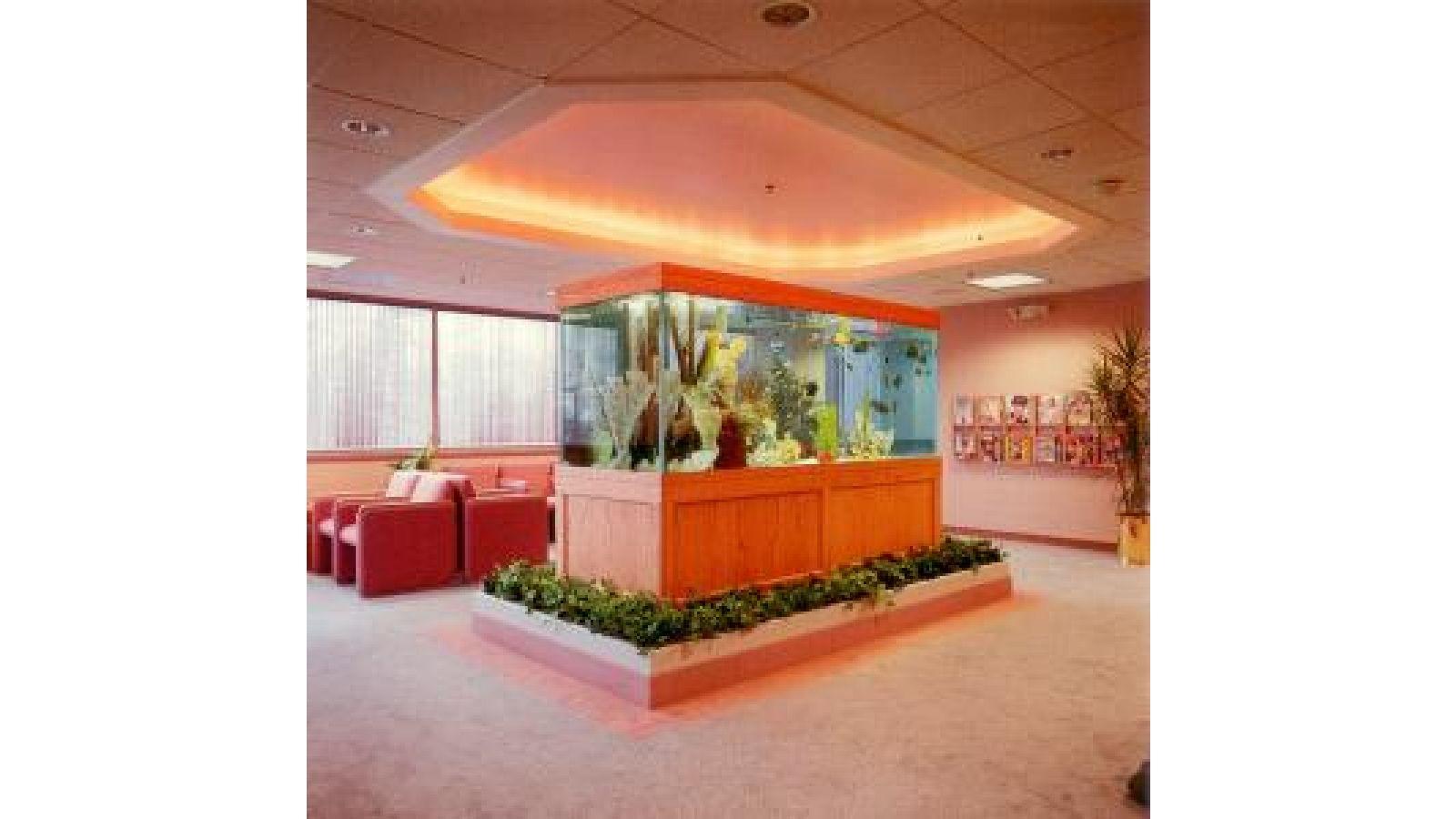 Medical Office Aquarium