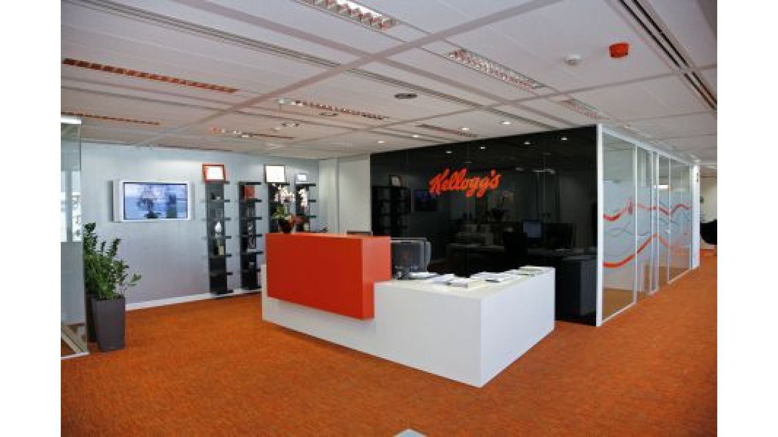 The Kellogg Spain Project seen by 3g office