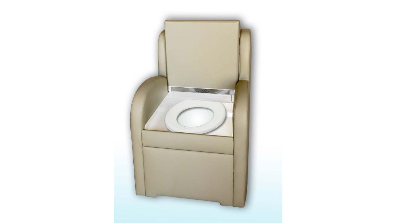 The Modern, Chic Toilet for the 21st Century