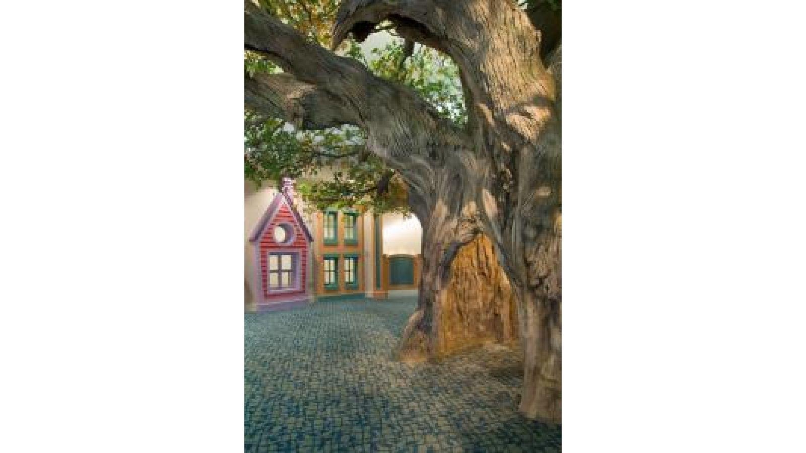 Maple Tree – Museum