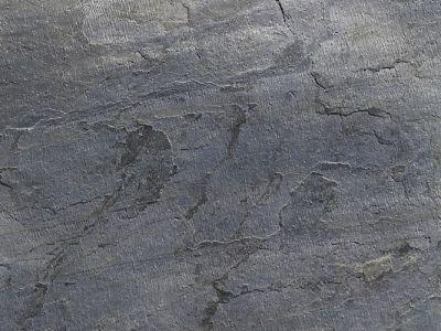 Axolotl Stone