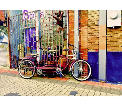 Vintage Bicycle Photography Print