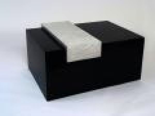 2009 AGK Coffee Table with Floating Tray