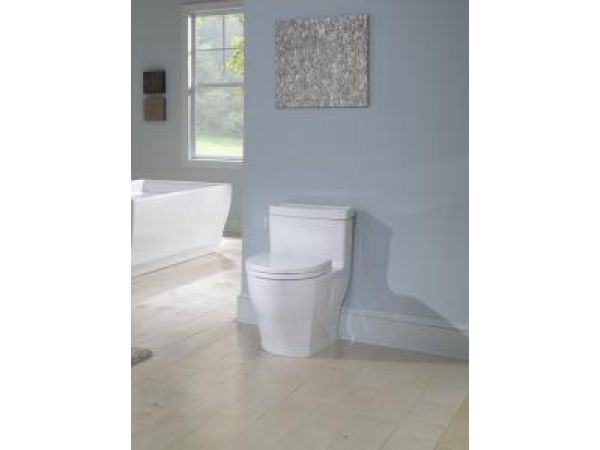 Aimes High-Efficiency One Piece Toilet