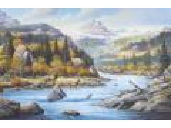 C827 Elk Country