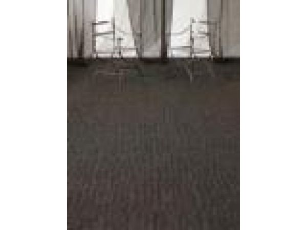 Plush Linen