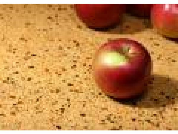 IceStone' Durable Surfaces