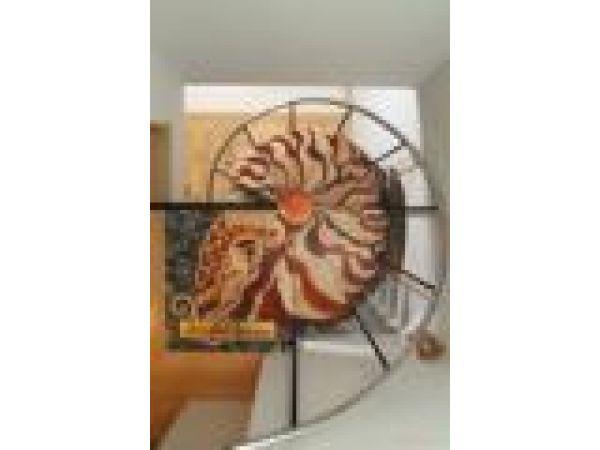 Nautilus Spiral Staircase