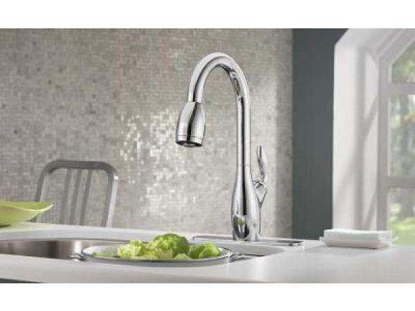 Daylene Kitchen Faucet
