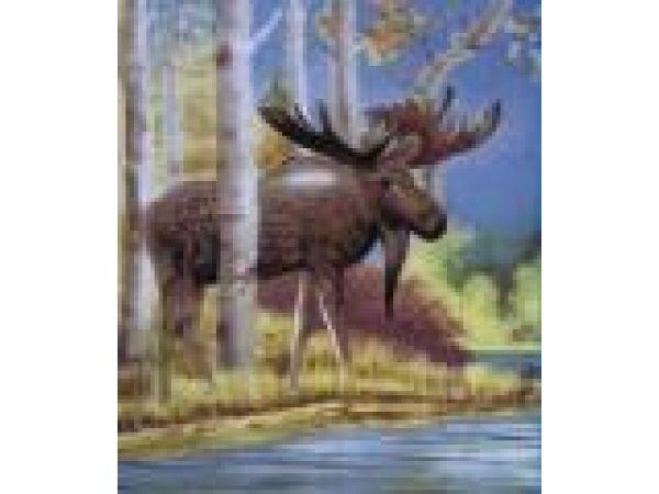 Moose PF509