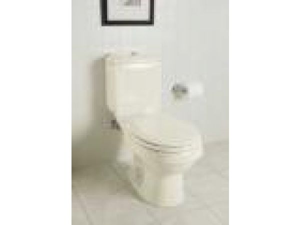 Rockton¢â€ž¢ toilet with Dual Force¢â€ž¢ flushing technology