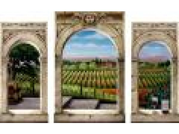 Winery Vistas