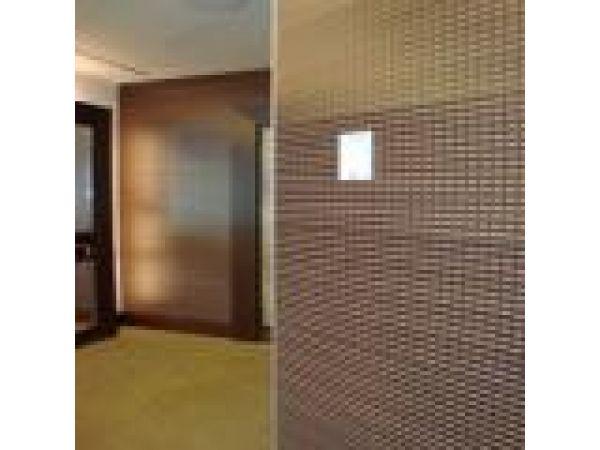 SilentWall - Interior Wall System
