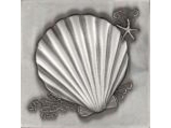 Waves & Shells Polished