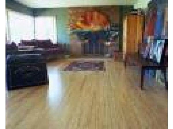 Premium HG Blonde Flooring