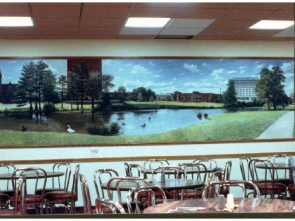 College Murals
