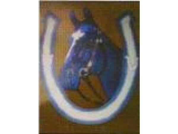 Horse & Shoe PF607
