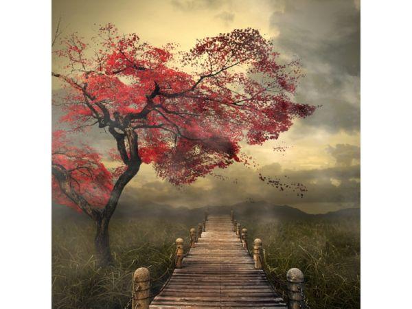 Go Ahead by Liu Wai Yip