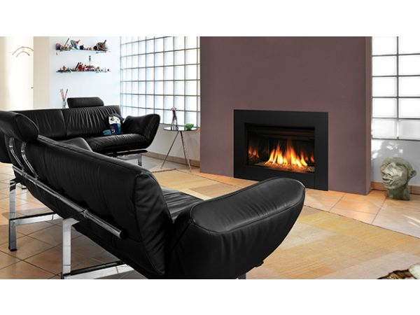 IronStrike Ravenna CD gas fireplace insert