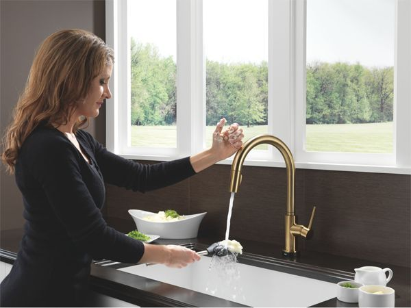 Trinsic Pull-Down Faucet with Touch2O Technology