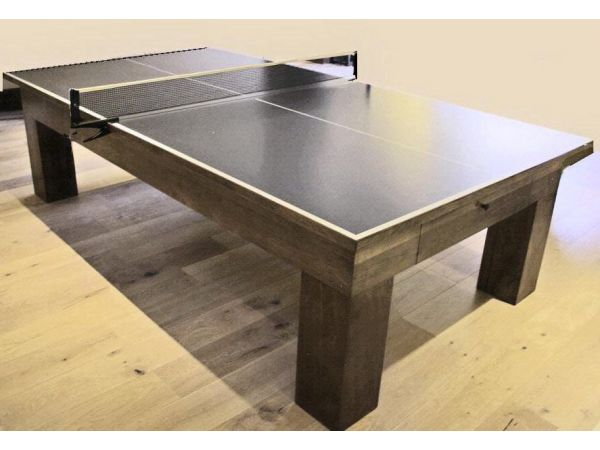 Modern Ping Pong Table