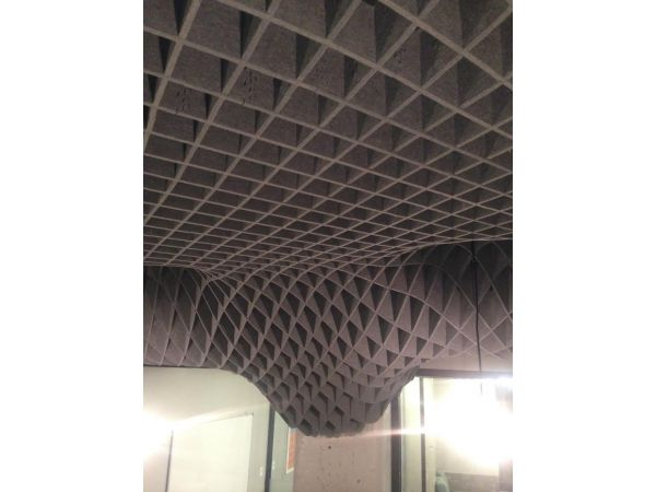 Hatch Acoustical Canopy