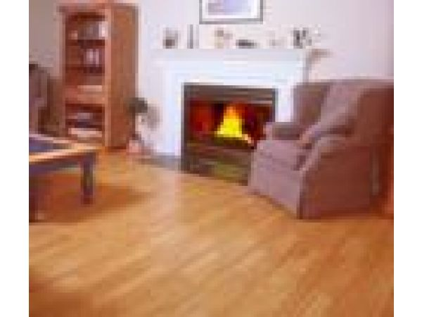 It'¹s A Snap'² Laminate Flooring System