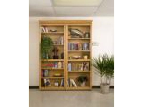 Bookcase Doors