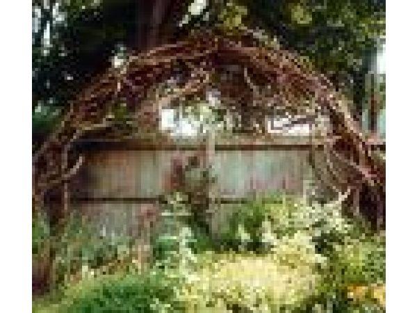 Woodland Arbor