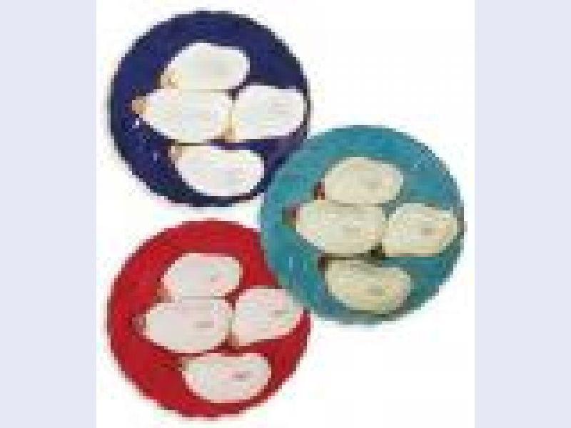 Porcelain Oyster Plates