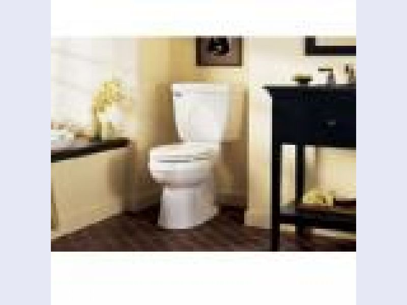 The Champion Toilet