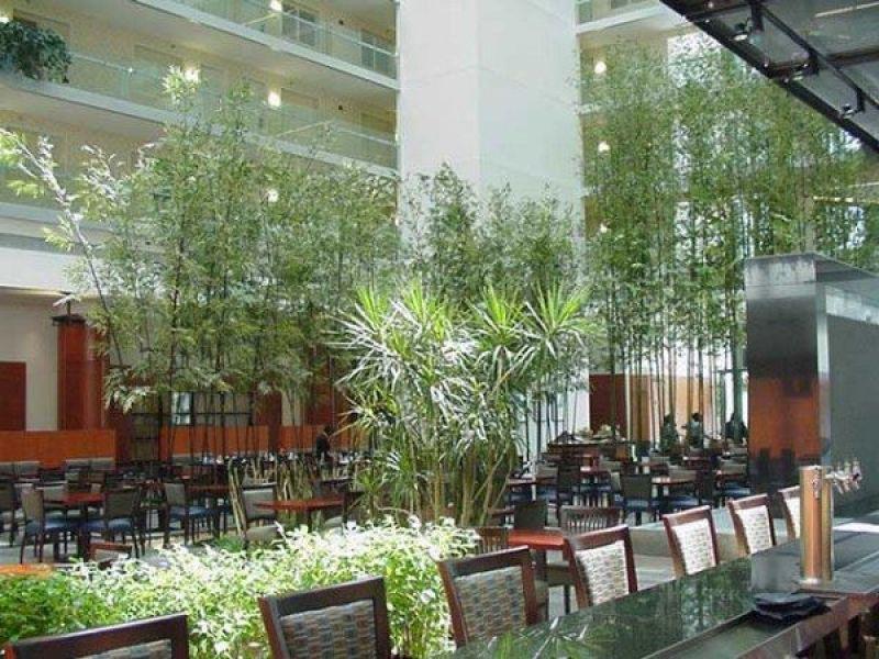 Exterior Artificial Bamboo