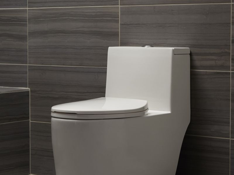Mirabelle Sitka One-piece High Efficiency Toilet with Skirted Bowl