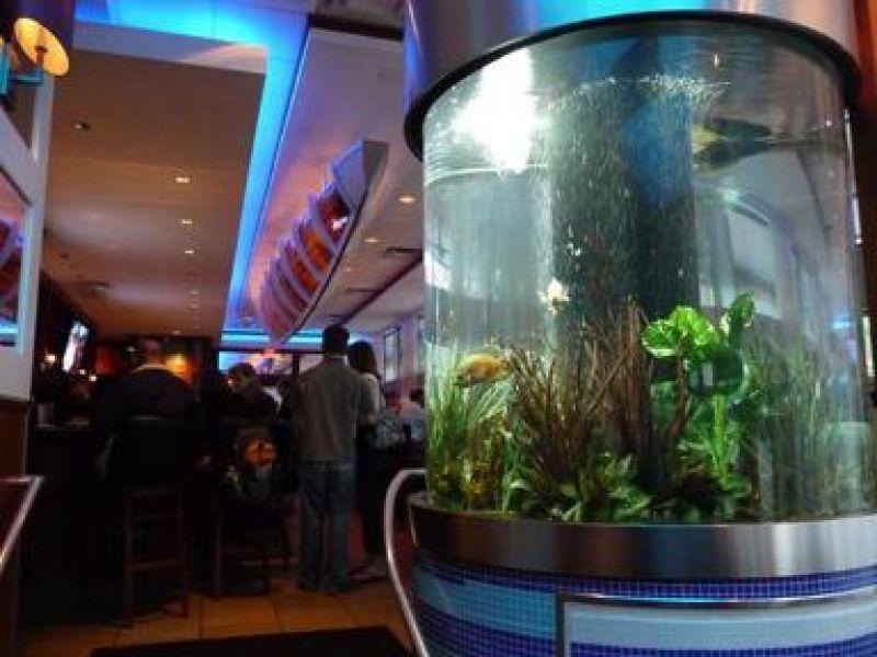 Seafood Restaurant Aquarium