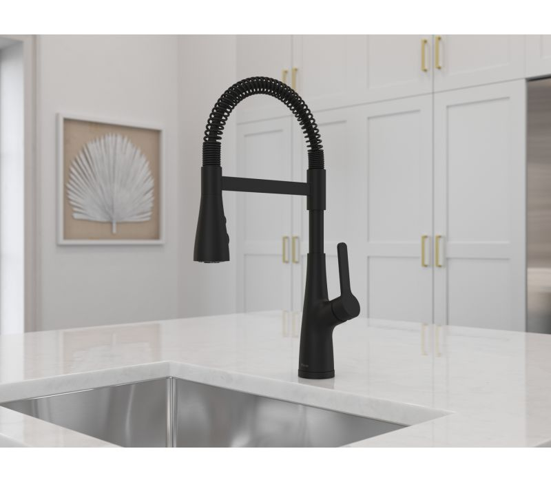 Neera Culinary Kitchen Faucet